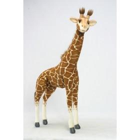"""Мягкая игрушка """"Жираф"""", 70 см в Донецке"""