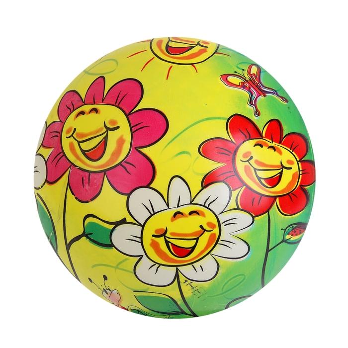 "Мяч ""Веселые ромашки"", глянцевый, диаметр 22 см, 100 гр"