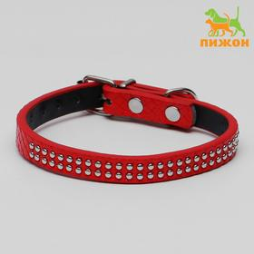 The corrugated collar with 2 rows of rivets, 33 x 1.2 cm, red