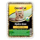 Травка гидро для кошек Gimpet 150 г