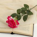 цветы искусственные роза 56 см d-8,5 см розовая - фото 4455962