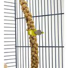 Прищепка-держатель Savic для лакомств птиц, 2 шт