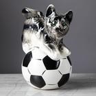"""Копилка """"Кот на мяче"""""""