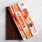 Шоколад молочный «Не взятка», 85 г