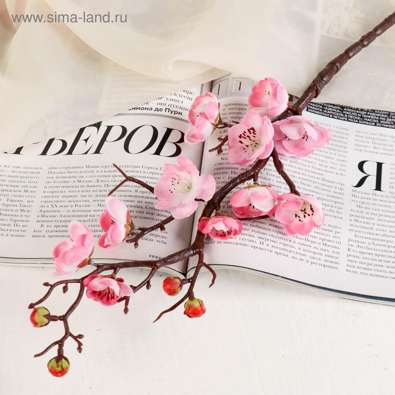 Серая роза цвет фото