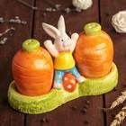"""Набор для специй """"Кролик"""", 2 шт 50 мл: солонка, перечница"""