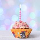 """Набор для выпекания кексов """"С днем Рождения""""друзья, набор 24 формочки"""