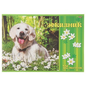 Эскизник А4, 12 листов «Счастливый пёс», бумажная обложка, блок 80 г/м²