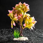 Растение искусственное аквариумное, 15,5 х 12 х 20,5 см - фото 7381937