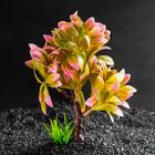Растение искусственное аквариумное, 15,5 х 12 х 20,5 см - фото 7381938