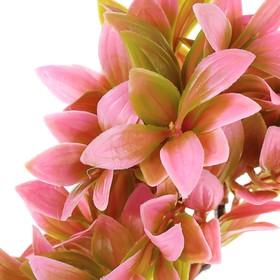 Растение искусственное аквариумное, 15,5 х 12 х 20,5 см - фото 7381940