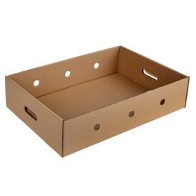 Ящик для овощей 55 х 38,5 х 13 см Ош