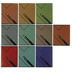 Комплект предметных тетрадей 48 листов «Диагональные полосы», 10 предметов, обложка мелованный картон, выборочный УФ-лак, блок офсет