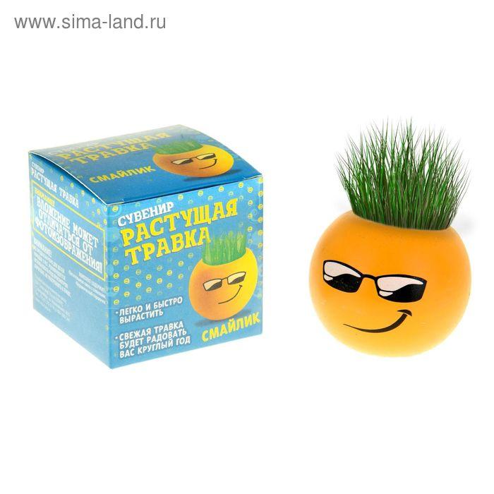 "Растущая трава ""Смайл"""
