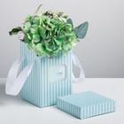 Коробка складная «Счастье», 10 х 18 см
