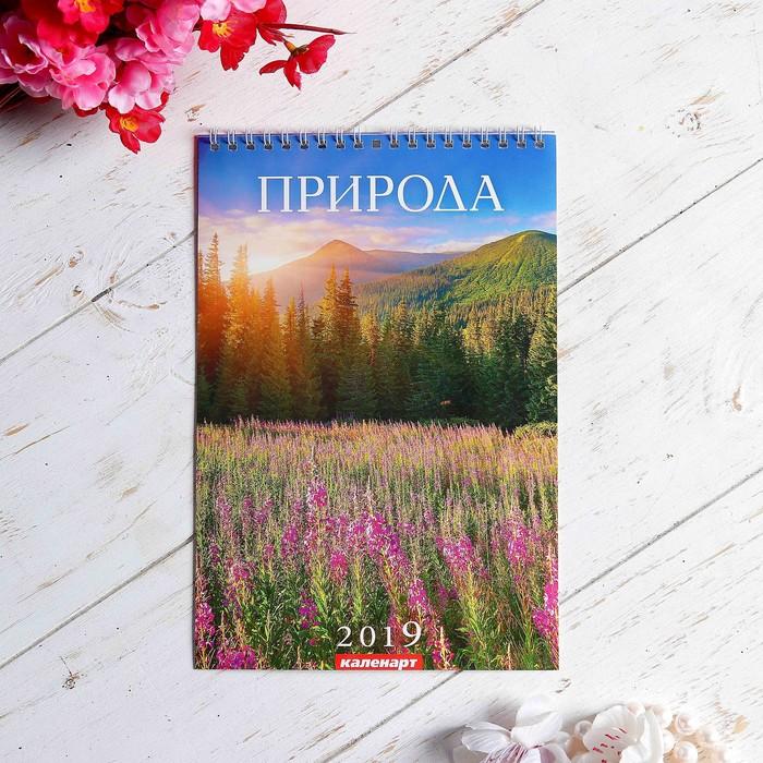 """Календарь перекидной, пружина """"Природа"""" 2019 год, 17х25см"""