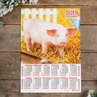 """Календарь листовой А3 """"Символ года - 2019 - 17"""" 29х42см"""