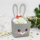 "Snack box ""happy New year!"" Bunny"