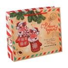 Пакет ламинат горизонтальный «Новогодняя почта», L 31 х 40 х 11 см