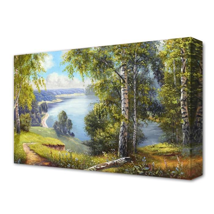 """Картина на холсте """"Летняя тишина"""" 60*100 см"""