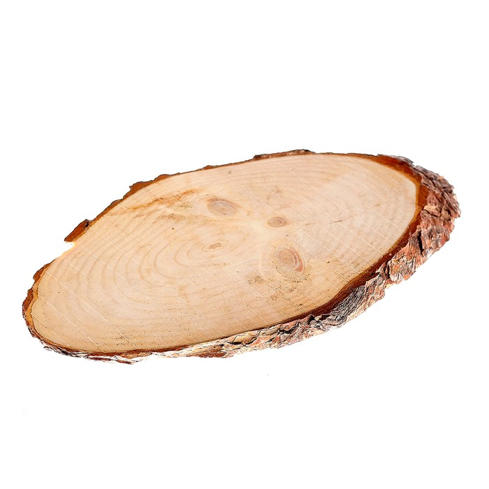 Спил сосны косой, шлифованный с одной стороны, 16х30 см, толщина 1,5см