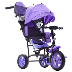 Велосипед трёхколёсный «Лучик Малют 2», колёса EVA 10'/8', цвет фиолетовый Ош