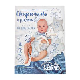 Папка для свидетельства о рождении «Скетч», для мальчика, под новый формат, А4, 32 х 22,3 см