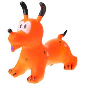 Grasshopper, a Dog, 58 x 35 x 58 cm, 1300 g, MIX color