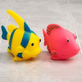 Набор игрушек для ванны «Рыбки», 2 шт.