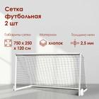 Сетка футбольная, белая нить 2,5 мм, 7,5 м х 2,5 м, в комплекте 2 сетки - фото 1553775