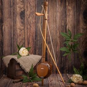 Exotic violin