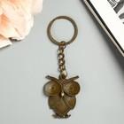 """Metal keychain """"Big owl"""" 4,7x3,7 cm"""