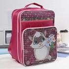 Рюкзак школьный, 2 отдела на молниях, 2 наружных кармана, цвет розовый