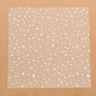 Ацетатный лист для скрапбукинга «Зимняя сказка», 30,5 × 30,5 см, 25 мкм