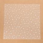 Ацетатный лист для скрапбукинга «Звёздочки», 30,5 х 30,5 см