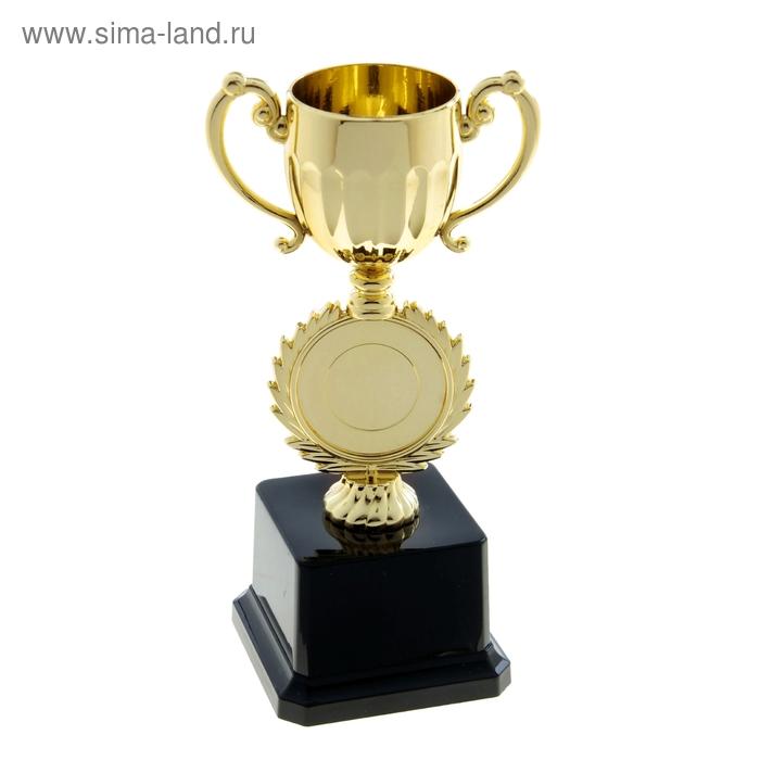 Кубок спортивный 025