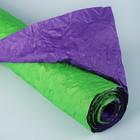 Салатово-фиолетовый