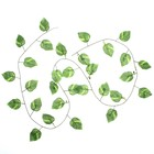 Лиана лист 2,4 м широкий цена за 1шт(фасовка 12шт)