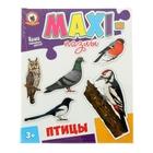 Макси пазлы «Птицы»