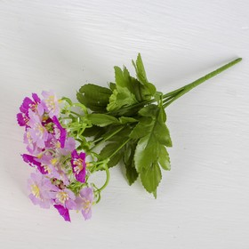Букет 'Нежные цветы' 3*25 см, микс Ош