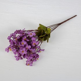 Букет 'Орхидеи мини' 3*30 см, микс Ош