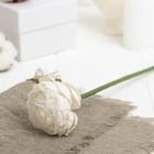 """Искусственный цветок """"Азиатский лютик"""" белый 25 см"""