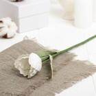 """Искусственный цветок """"Тюльпан"""" белый 28 см"""
