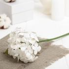"""Искусственный цветок """"Карликовая гортензия"""" белая 27 см"""