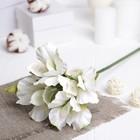 """Искусственный цветок """"Альстрёмерия"""" белая 48 см"""