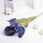 """Искусственный цветок """"Ирис"""" фиолетовый 48 см"""