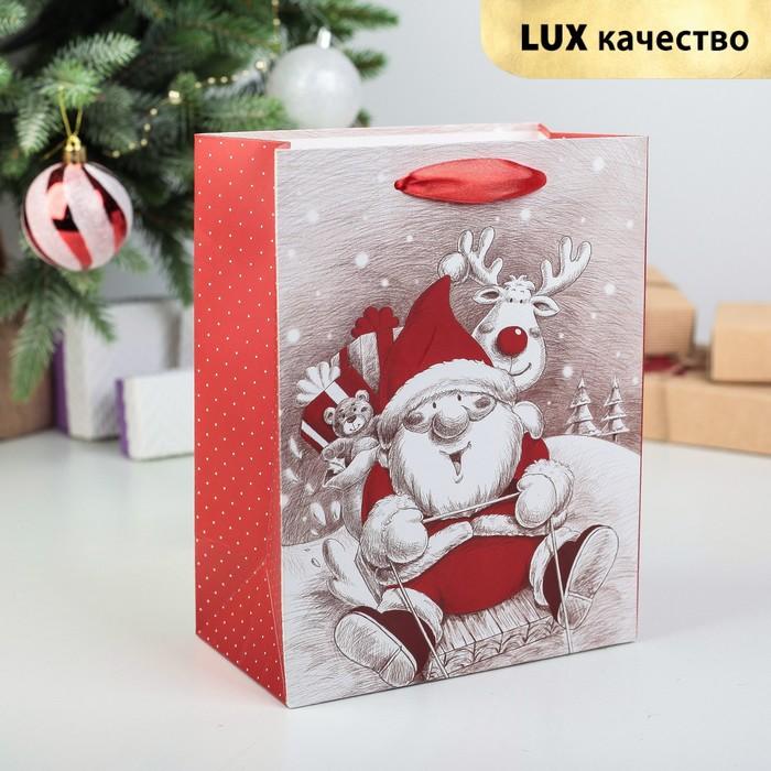 """Пакет ламинированный """"Дед Мороз"""", люкс, 18 х 10 х 23 см"""
