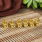 "Netsuke Ltd ""Elephants"" gold set of 6 pieces 3x2,4x1,8 cm"