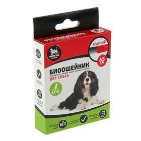 """Биоошейник антипаразитарный """"Пижон Premium"""" для собак, красный, 65 см"""
