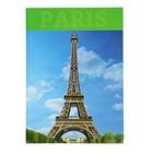 """Колледж-тетрадь А4, 160 листов клетка Calligrata """"Париж"""", твердая обложка"""